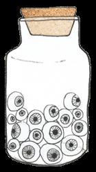 bocal-oeil